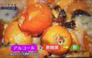 RKBたべごころ「柿酢」放映「柿をつぶして自然にアルコールを造ります」「アルコール+酢酸菌=お酢になります。」