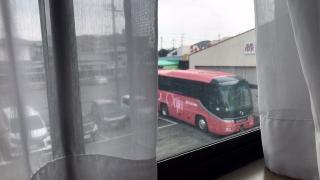 熊本県観光バス