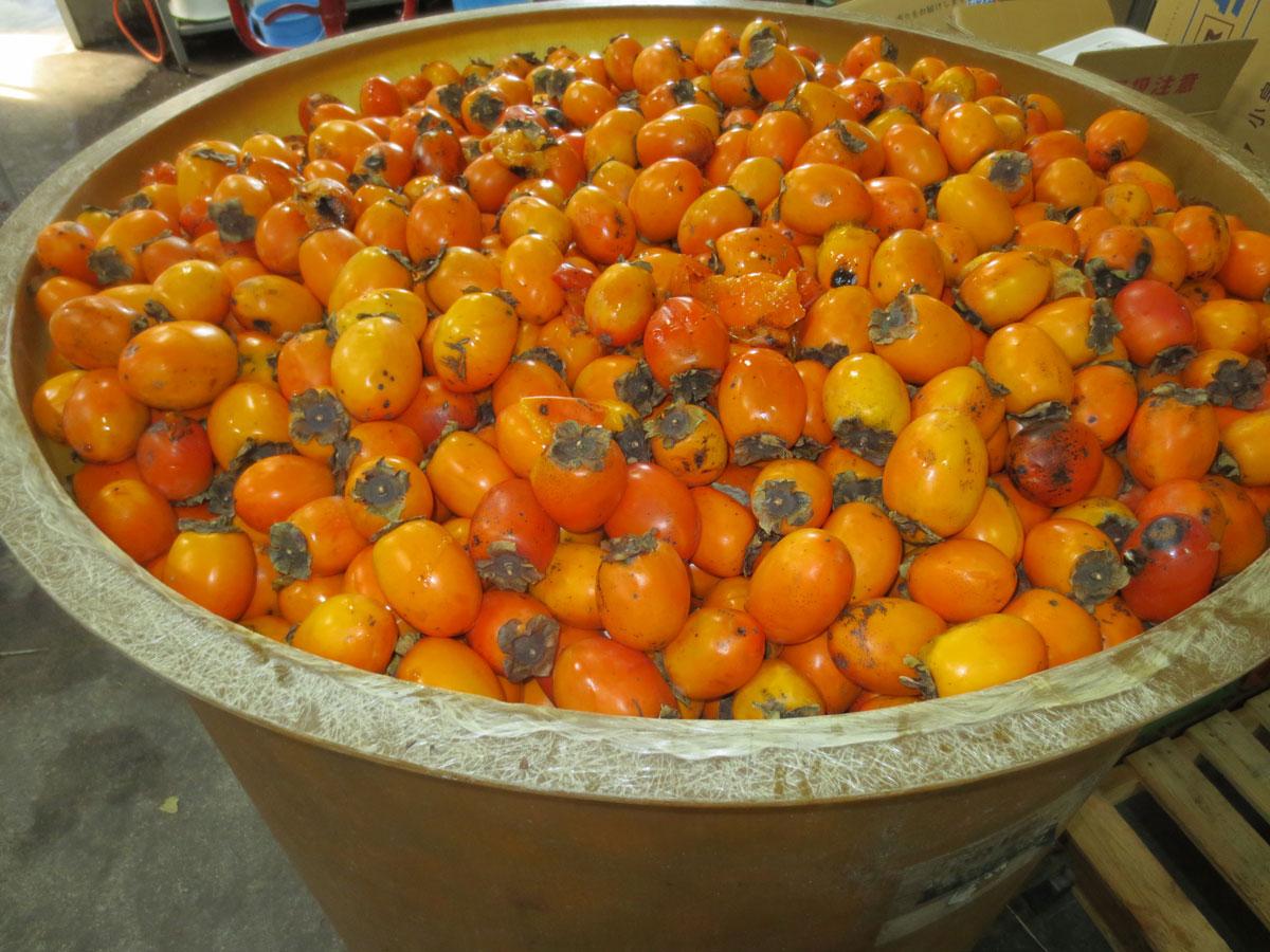 福岡県産富有柿