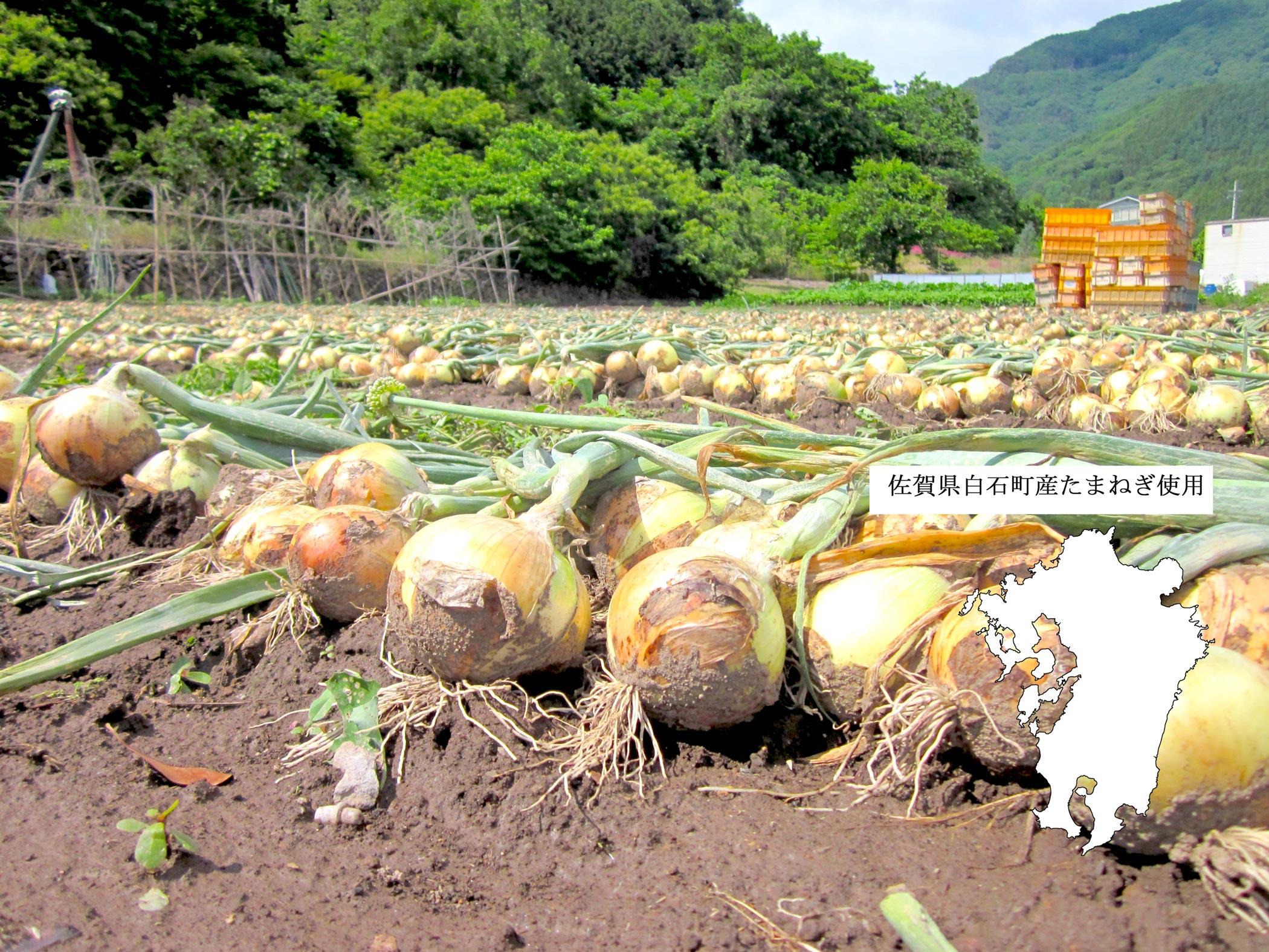 佐賀県産たまねぎ使用産地表示