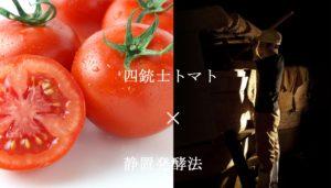 四銃士トマト×百八十日静置発酵法