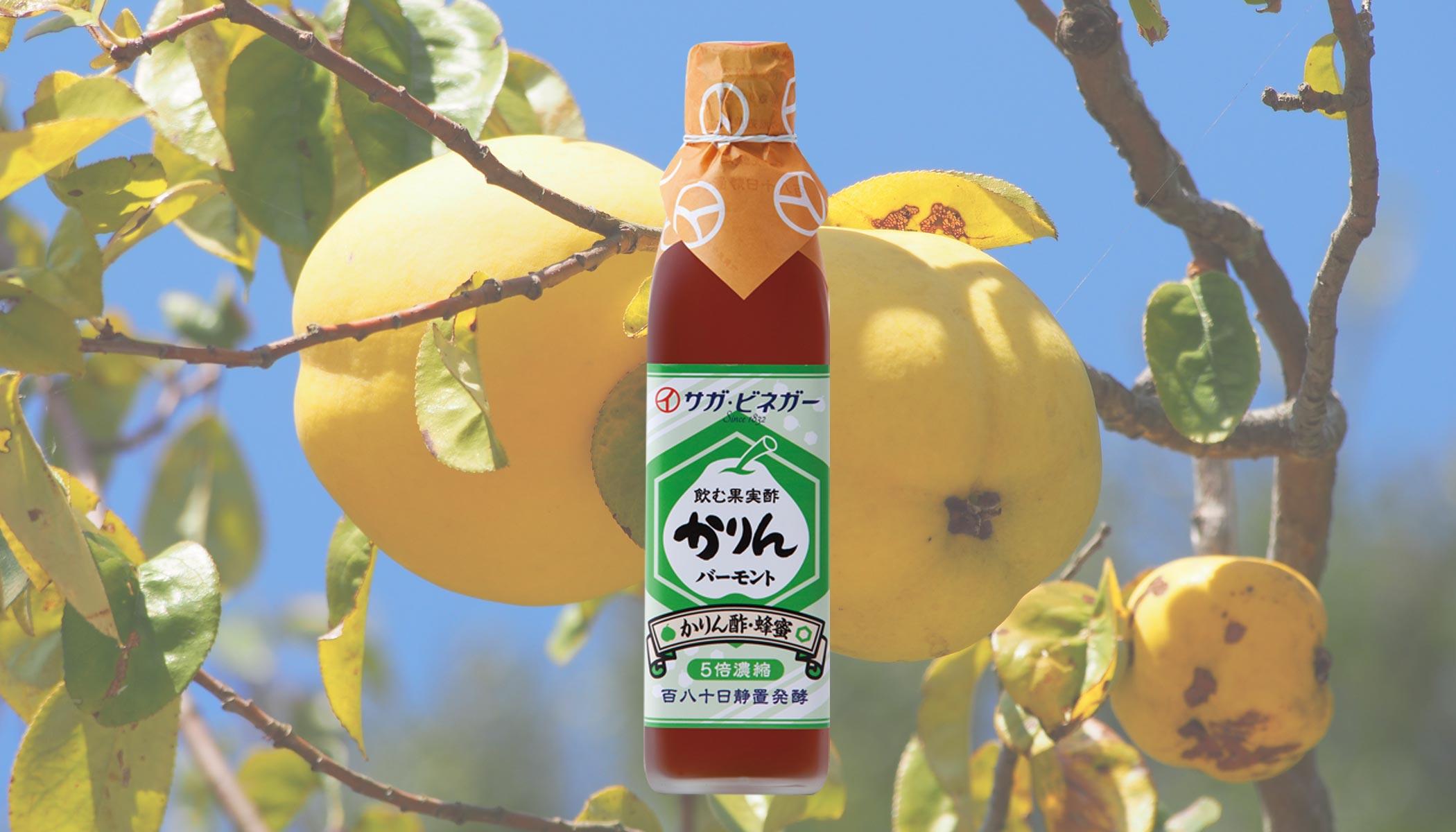 300ml飲む果実酢かりんバーモント