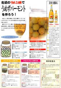 右近のりんご酢梅酢造り