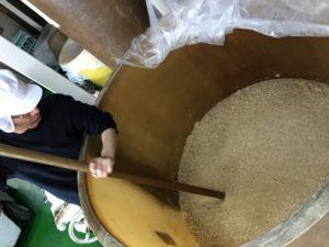 玄米もろみ