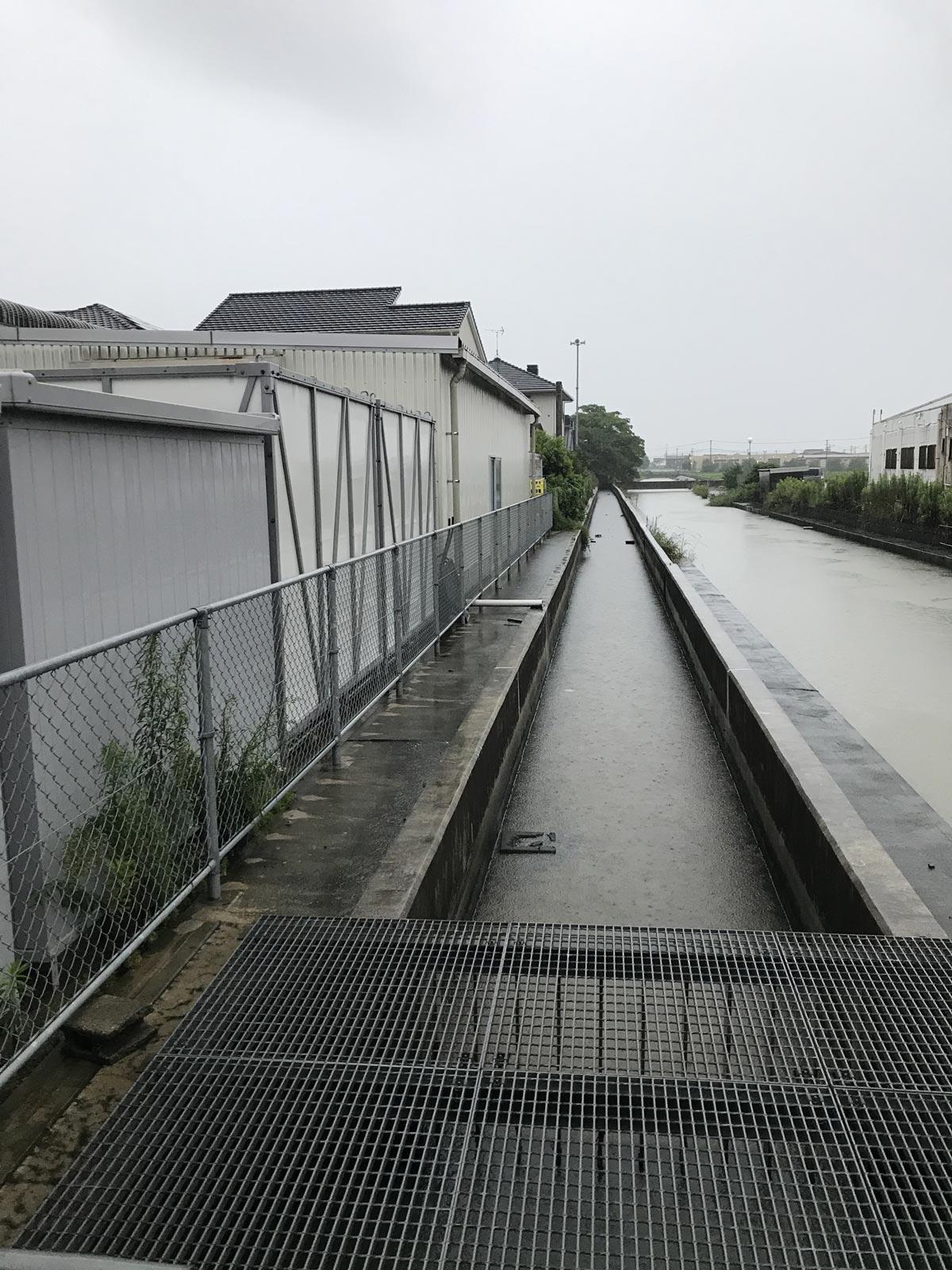 九州豪雨 サガビネガー皮